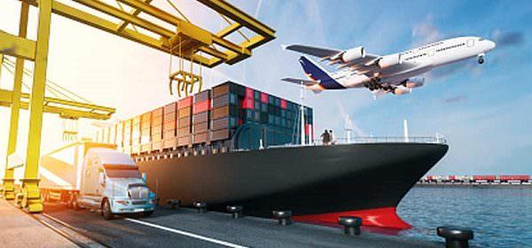 سهم کالا اساسی از واردات چقدر است؟